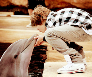 justin bieber, dolphin, and boy image