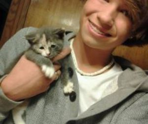 cat, cute boys, and meow image