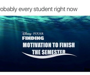 funny, school, and student image