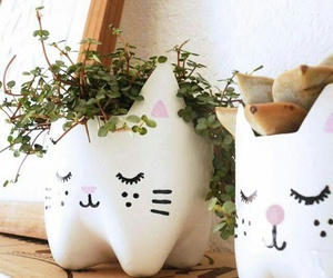 cat, diy, and plants image