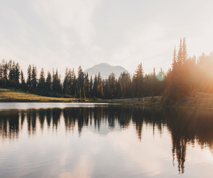 forest, mountain, and lake image