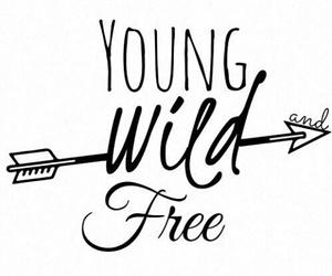 overlay, free, and wild image