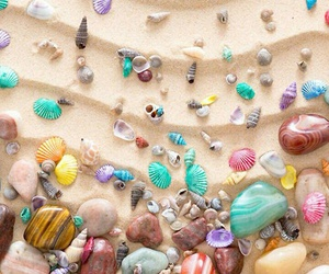 wallpaper, shell, and beach image