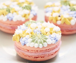 ‎macarons and dessert image