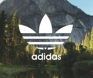 adidas, wallpaper, and nature image