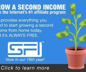 network marketing, internet income, and home-based business image