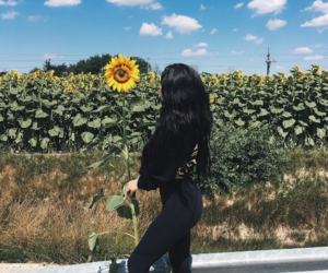 kylie jenner, sunflower, and flowers image