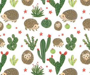 background, cacti, and hedgehog image