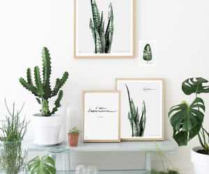 artsy, plant, and cactus image
