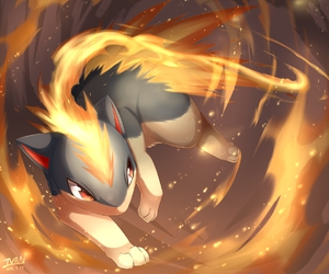 orange, pokemon, and fire type image