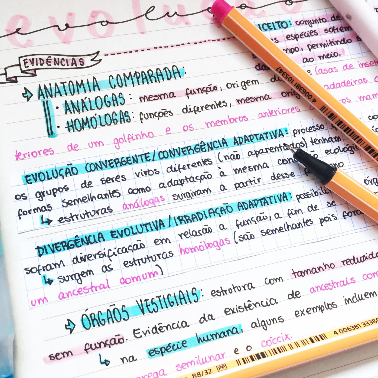 75 Images About School Study Relax On We Heart It See More