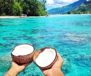 blue, sea, and cocos image