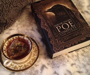 books, bookworm, and poe image