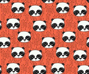 panda, wallpaper, and animal image