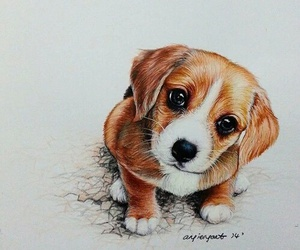 drawing, art, and dog image