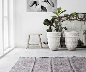 design, home, and plants image