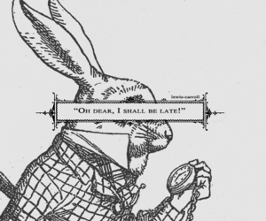 alice in wonderland, rabbit, and alice image
