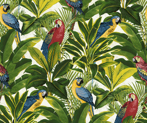arara, pattern, and background image