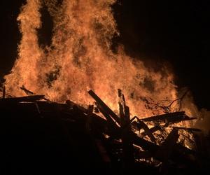 bonfire, company, and Hot image