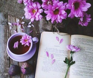 autumn, book, and flower image