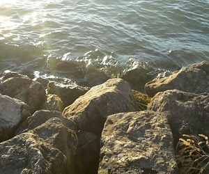 sea, love, and water image