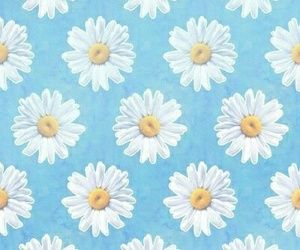 blue flowers cute image
