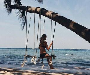 beach, palm, and Sunny image