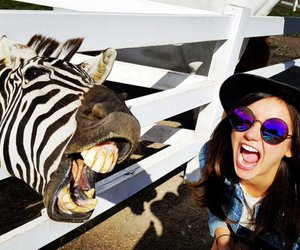 Nina Dobrev and zebra image