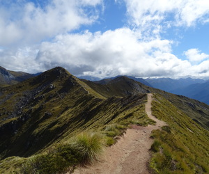 adventure, hiking, and new zealand image
