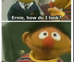funny, ernie, and lol image