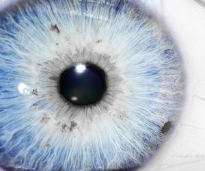 blue, blue eye, and close up image
