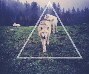 awesome, hipster, and triangle image