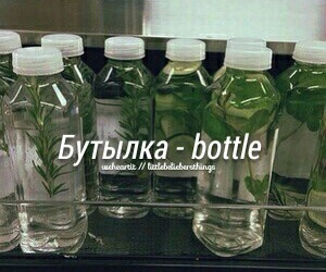 bottle, russian, and language image
