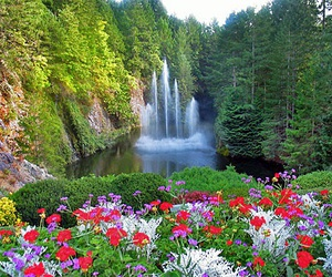 garden and waterfall image