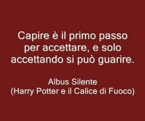 harry potter, albus silente, and calice di fuoco image