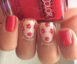 flower, red, and nail art image