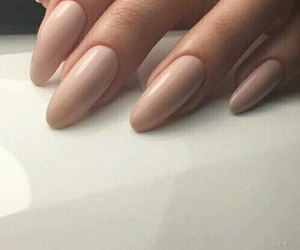 beige, bambi brown, and naked nails image