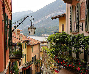 bellagio, europe, and flowers image