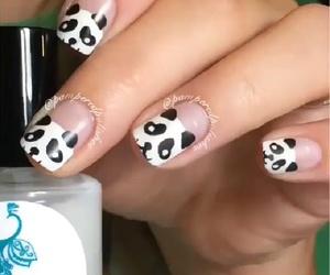 black and white, nail art, and panda image