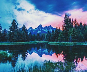 forest and mountains image