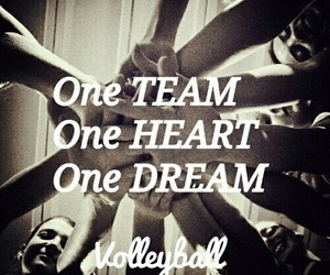team, volley, and volleyball image