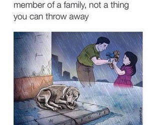 family, pet, and dog image