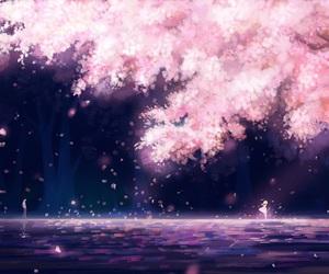 anime, sakura, and wallpaper image