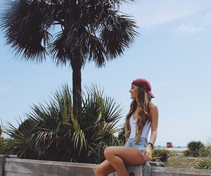 gorgeous, palm tree, and summer image