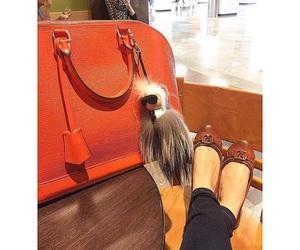 Louis Vuitton, luxury, and karlito image