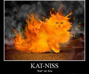 cat, kat, and hunger games image