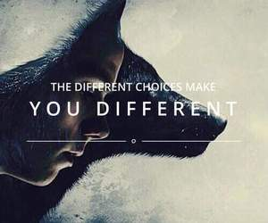 wolf, teen wolf, and quote image