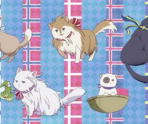 anime, axis powers hetalia, and aph image