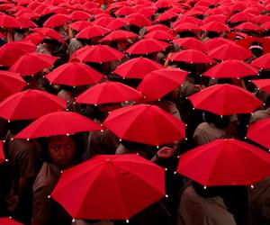 red and umbrella image