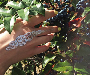 berry, nails, and tattoo image